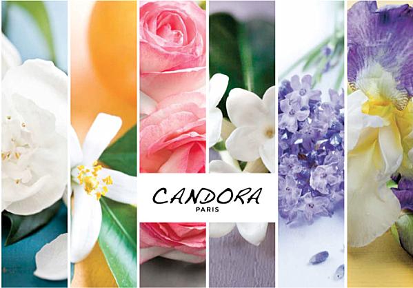 Créer son parfum sur-mesure avec Candora