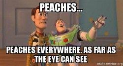 peaches-peaches-everywhere-4cv7dg