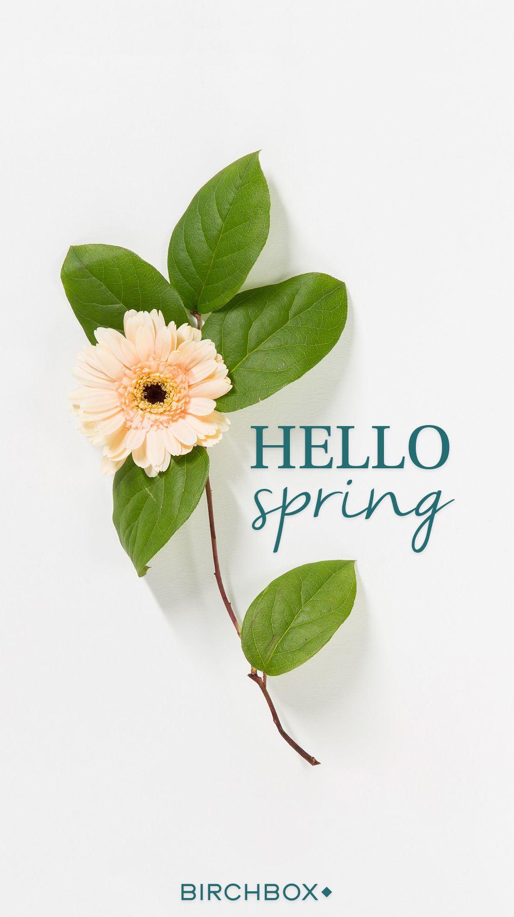 Hello Spring Vos Fonds D Ecran Du Printemps Encyclobeaute Birchbox